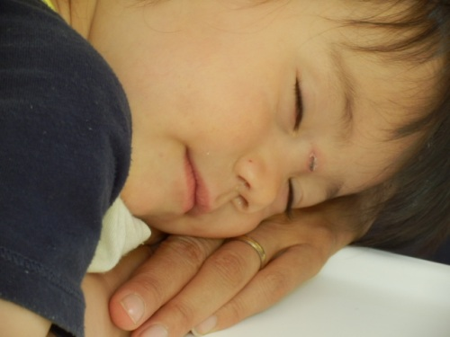 ngủ gục trên bàn tay mẹ sau khi chén Phở